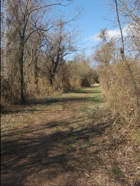 Path Around the Pond