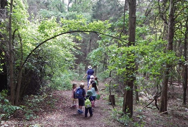 Nature Explorers hiking