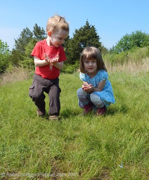 children wathcing butterfly