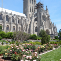 Washington National Cathedral Garden