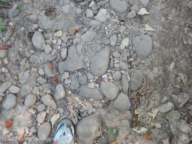 Stones on the Mountain