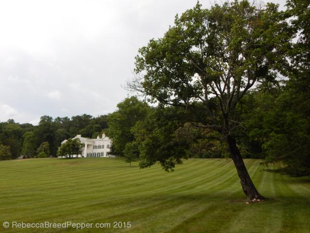 Lawn, Tree, House