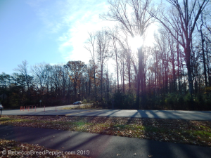 South Entrance 20151124