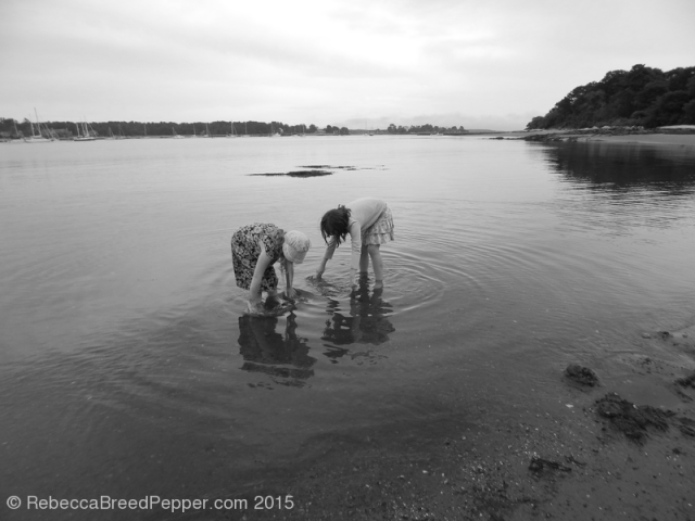 Looking in the Water 20151205