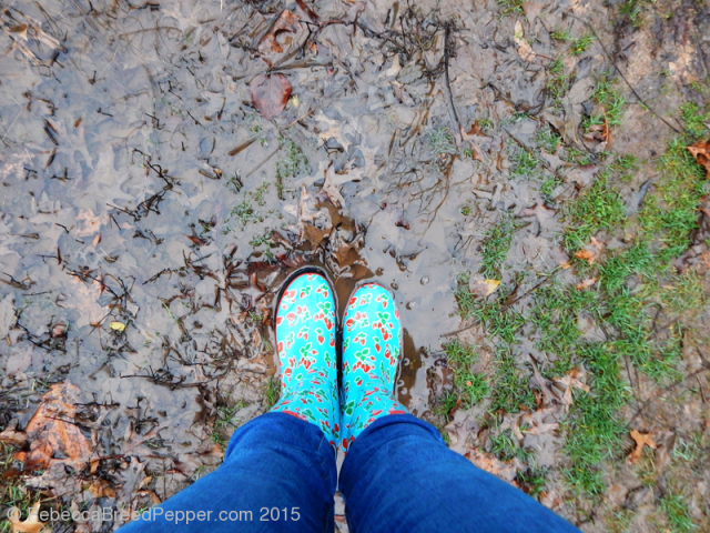 Mud 20151227