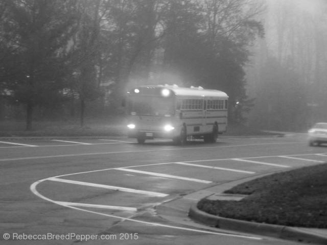 School Bus 20151202