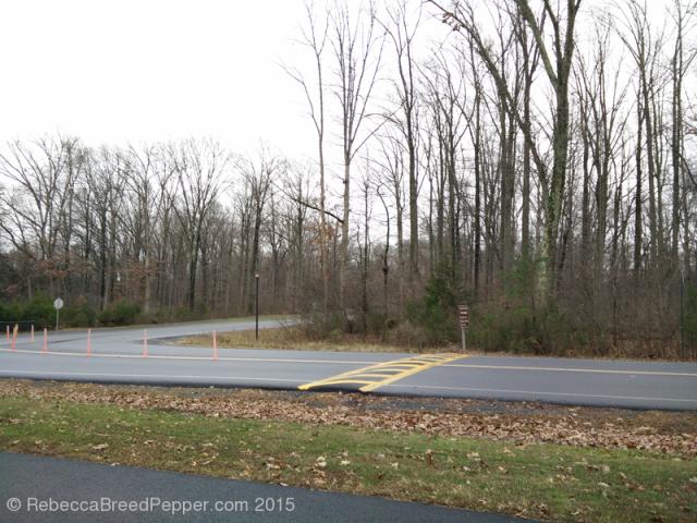 South Entrance 20151227