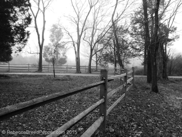 Fence 20151227