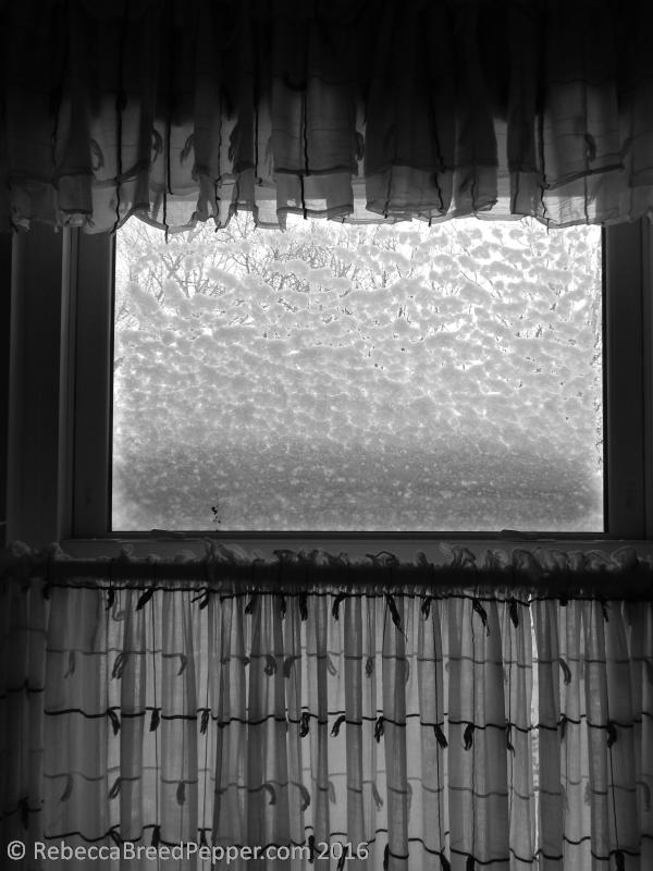 The Upstairs Bathroom Window