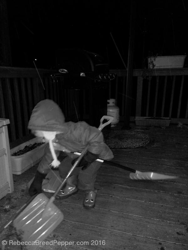 Three Shovels 20160113