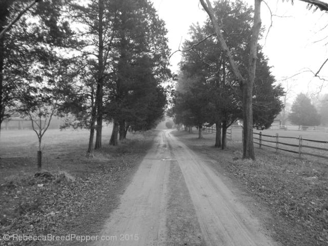 Vestal's Gap Road 20151227