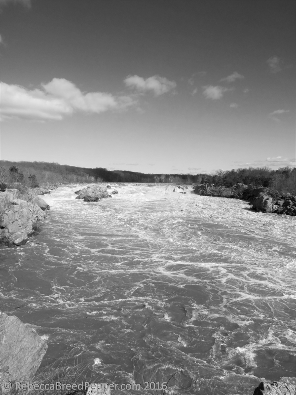 Great Falls from Lookout 3