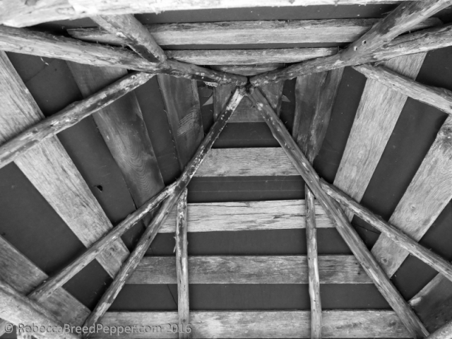 Inside of Well Roof
