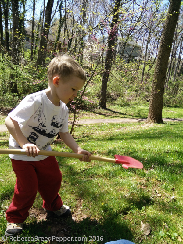 Henry with a Shovel