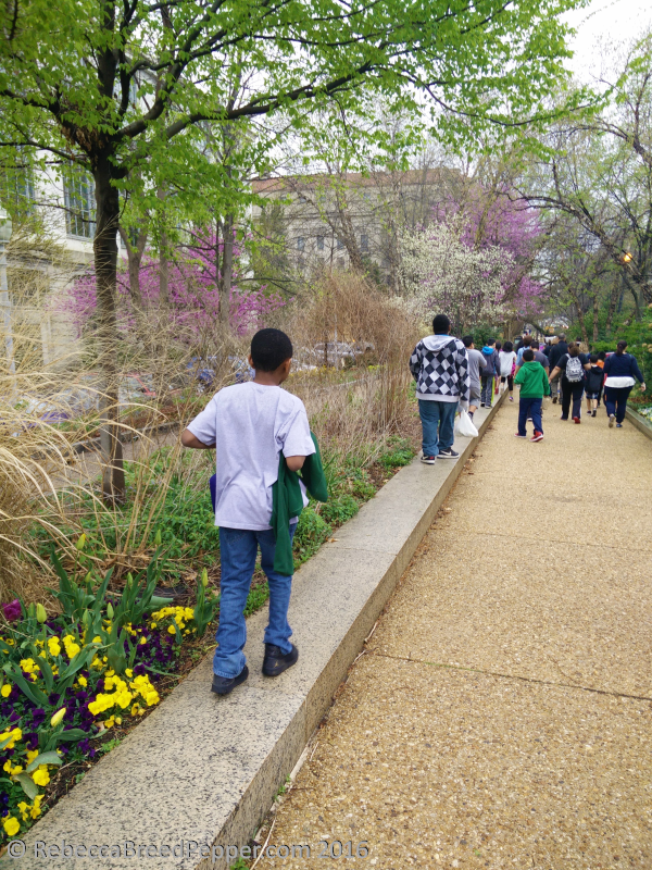 Spring Walk to the Museum