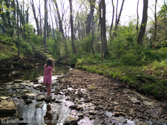 Abigail Crossing the Creek