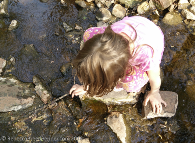 Abigail touching the algae