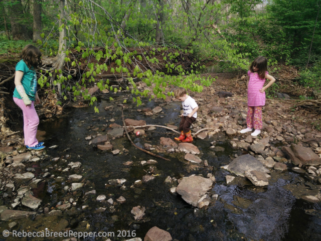 Kids in the Creek
