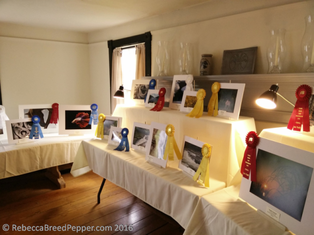 photo-expo-room-1