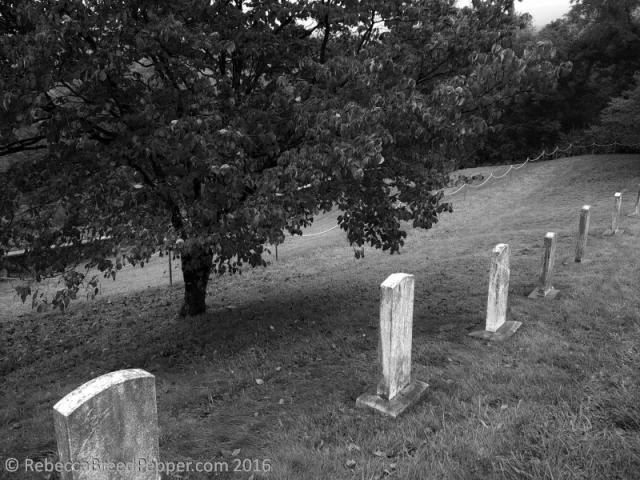 horse-cemetery-bw