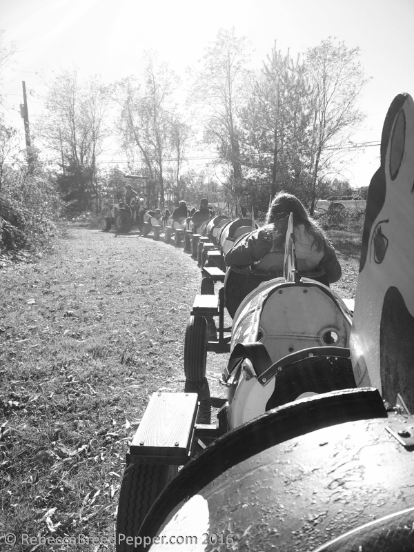 cow-train