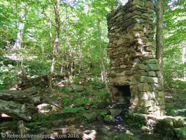 patc-cabin-remnants