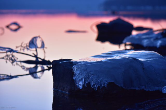 Ice on Rock, Sunrise Behind