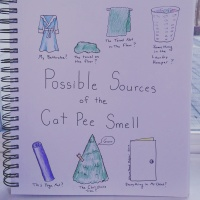 Possible Sources of the Cat Pee Smell