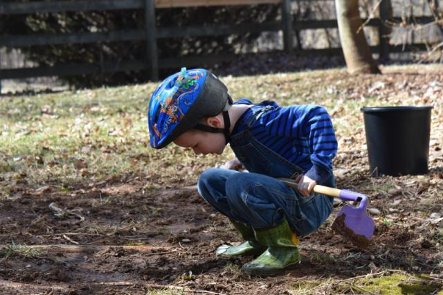 Examining Dirt